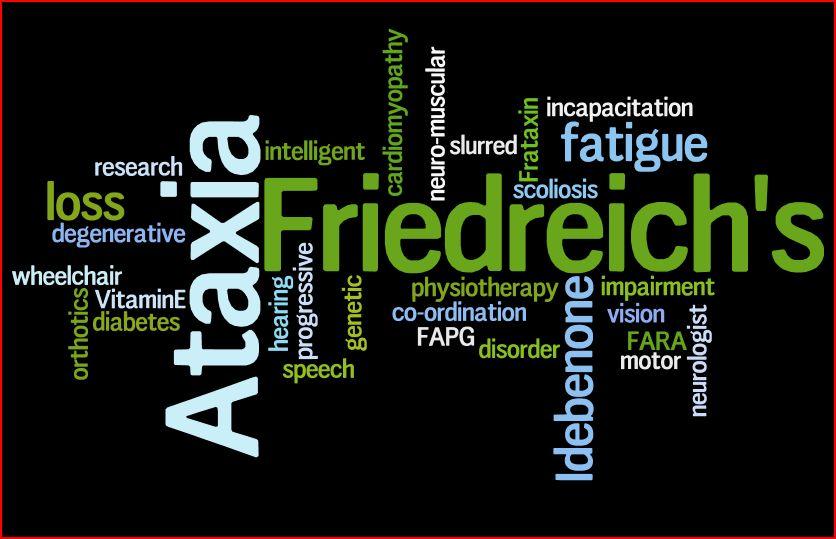FA-Wordle
